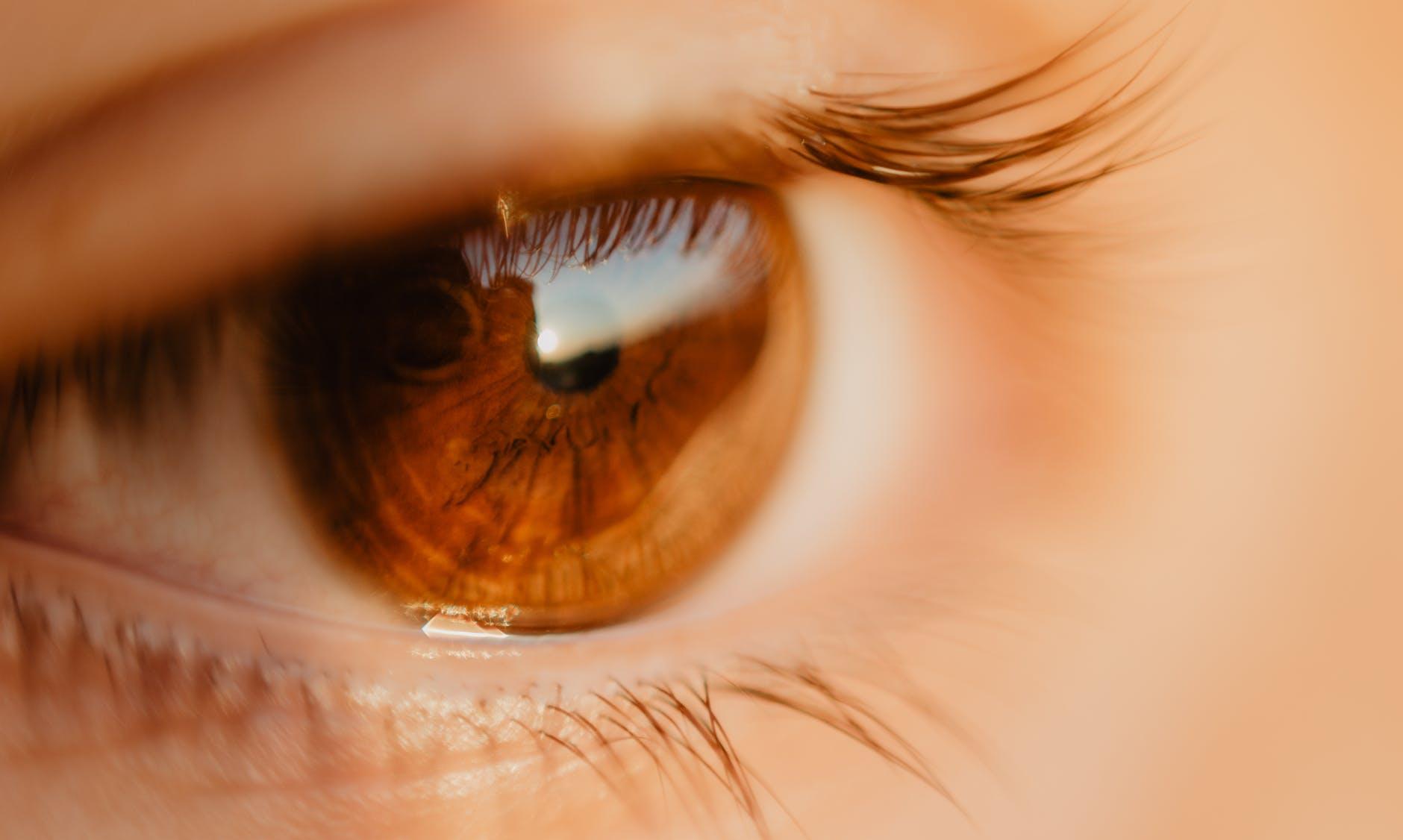rottura retinica - CAMO - Centro Ambrosiano Oftalmico