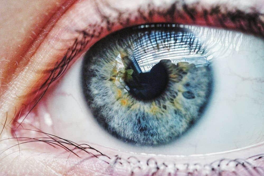 distacco di retina - CAMO - Centro Ambrosiano Oftalmico